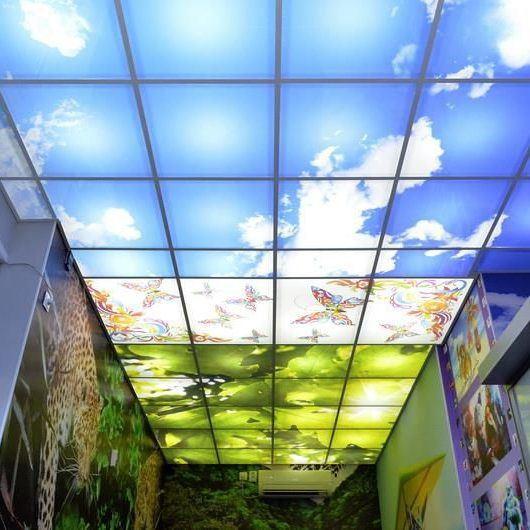 Печать на подвесном потолке (система Армстронг)